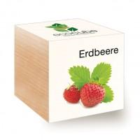 """Ecocube Pflanze im Holzwürfel """"Erdbeere"""""""