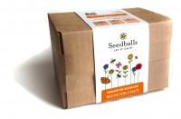 Seedballs Baukasten Bienenblumen