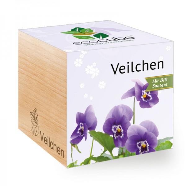 """Ecocube Pflanze im Holzwürfel """"Veilchen"""""""