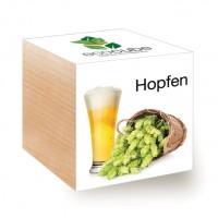"Ecocube Pflanze im Holzwürfel ""Hopfen"""