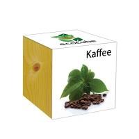 """Ecocube Pflanze im Holzwürfel """"Kaffee"""""""