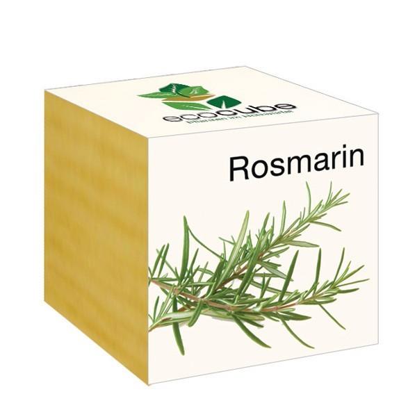 Ecocube Pflanze Holzwürfel Rosmarin Nachhaltig Ökologisch