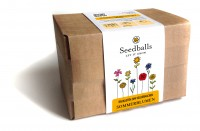 Seedballs Baukasten Sommerblumen