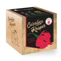 "Ecocube Pflanze im Holzwürfel ""Carolina Reaper"""