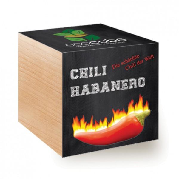 """Ecocube Pflanze im Holzwürfel """"Chili Habanero"""""""