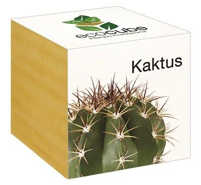 "Ecocube Pflanze im Holzwürfel ""Kaktus"""