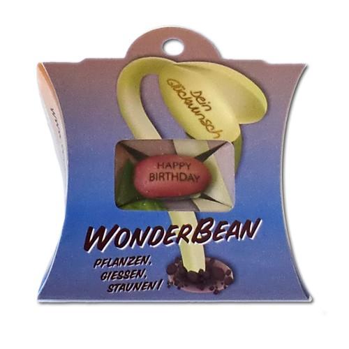 "Wonderbean ""Happy Birthday"""