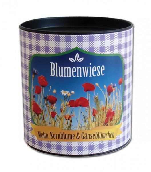 "City Garden - Stadtgarten ""Blumenwiese"""