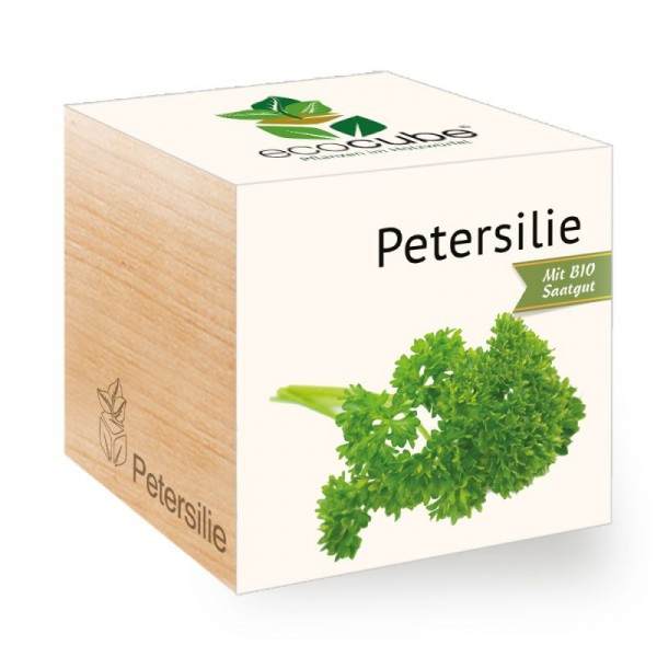 "Ecocube Pflanze im Holzwürfel ""Petersilie"""