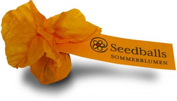 Seedballs Sommerblumenmischung (1 Stk.)