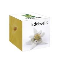 """Ecocube Pflanze im Holzwürfel """"Edelweiß"""""""