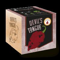 "Ecocube Pflanze im Holzwürfel ""Devils Tongue"""